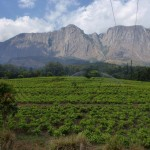 mulanje massif
