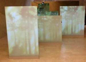 jewish museum warsaw beauty