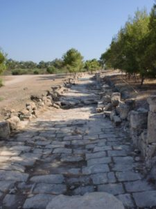 salamis the colonnade street