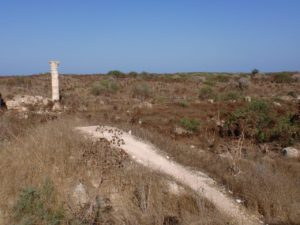 salamis unexcavated