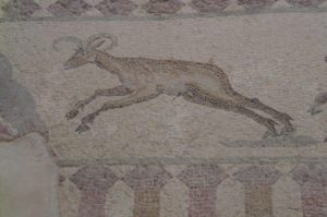 house of Dionysos in paphos deer mosaic
