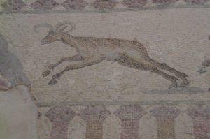 house of Dionysos in paphos deer mosaic