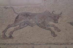 house of dionysos paphos bull mosaic