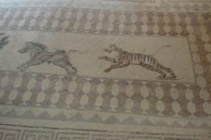 house of Dionysos in paphos animal mosaics